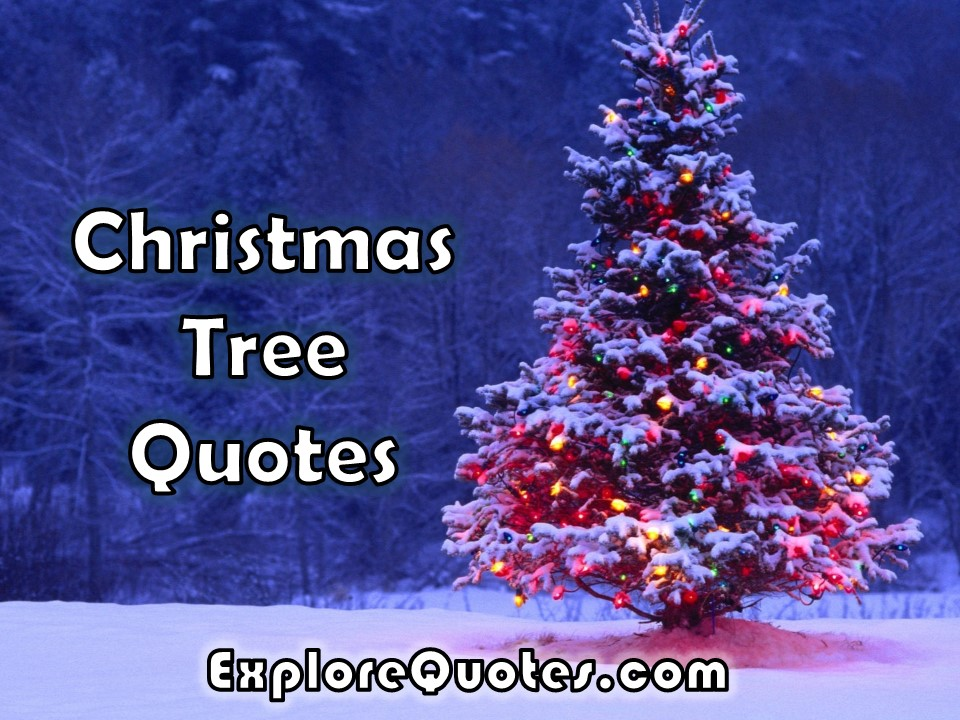 Christmas Tree Quotes Christmas Tree Quotes, Images, Pictures For WhatsApp, Facebook 2019 Christmas Tree Quotes